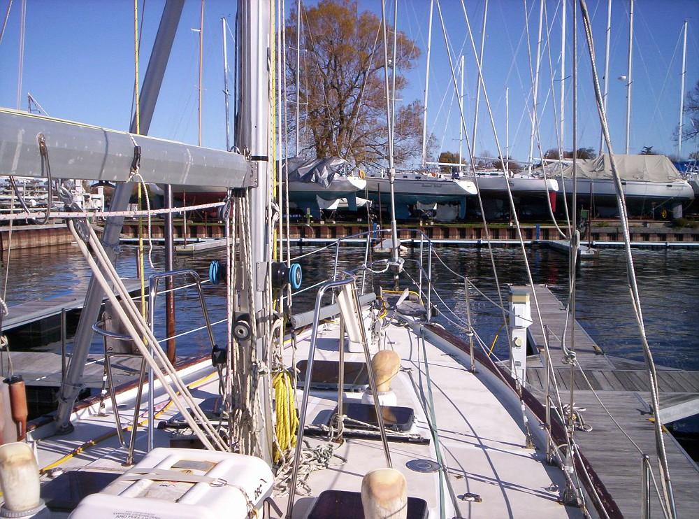 043 - Balmacara - deck