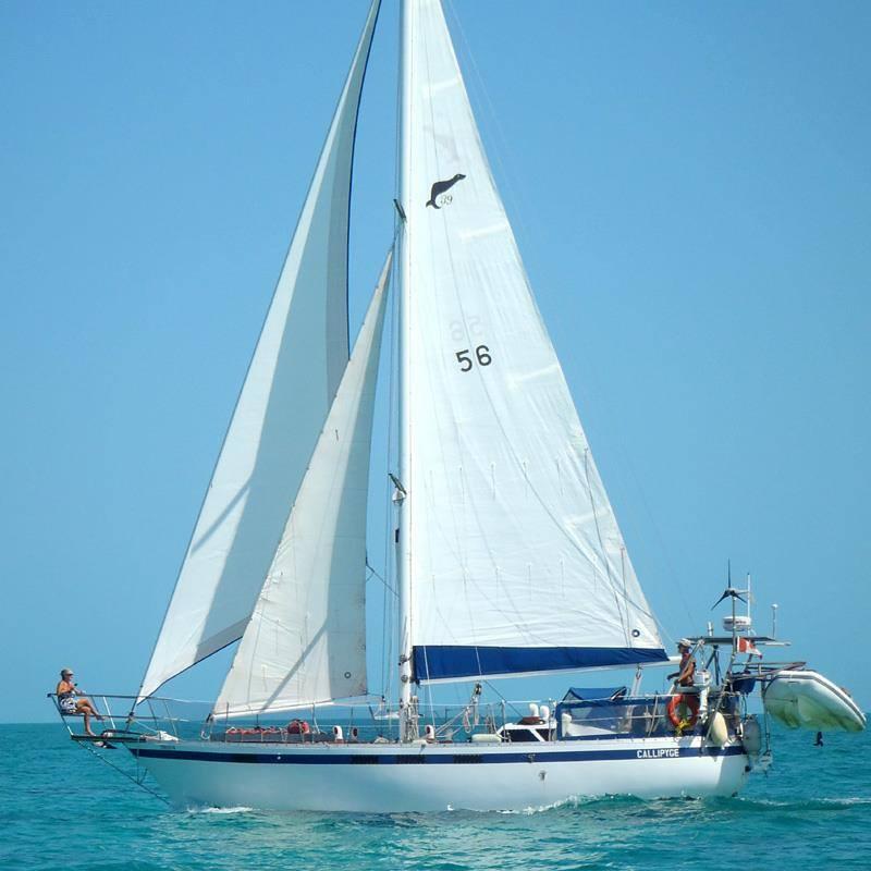 056 - Callipyge - sailing