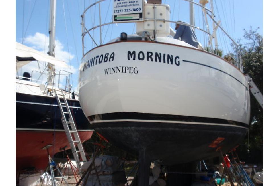 066 - Pinguescense (Manitoba Morning) - stern