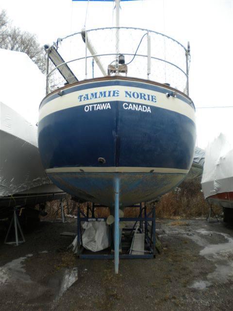 119 - Tammie Norie - stern