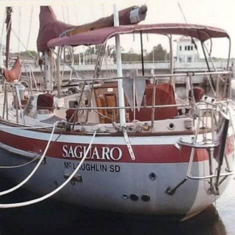 136 - Saguaro - featured