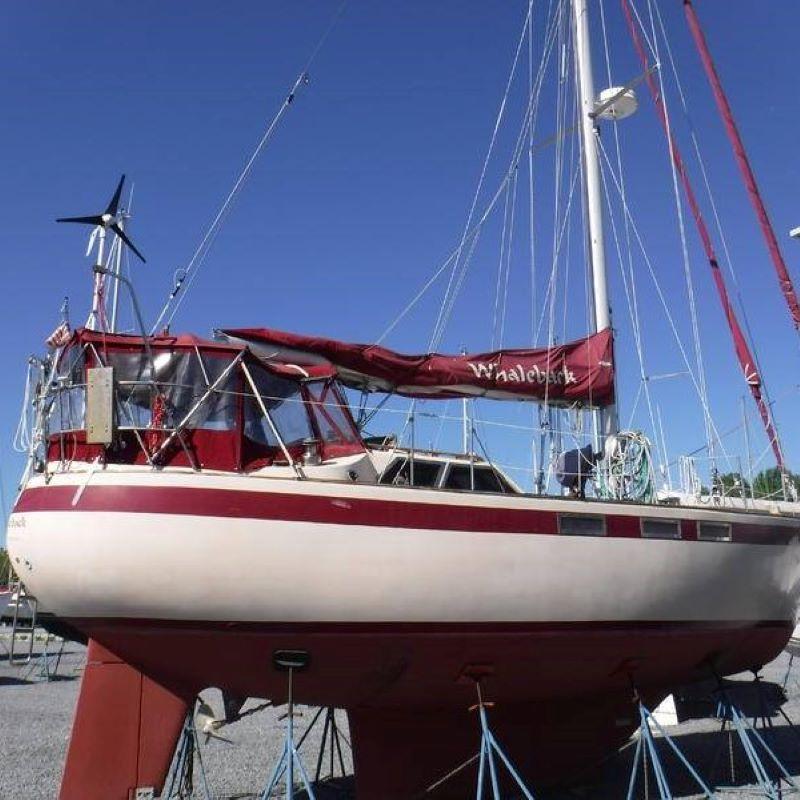 138 - Whaleback - featured