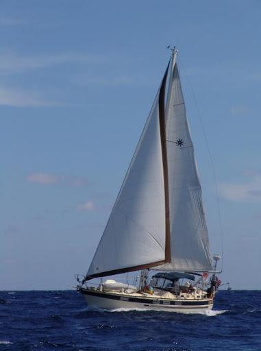 086 - Jack Iron - Med (2)