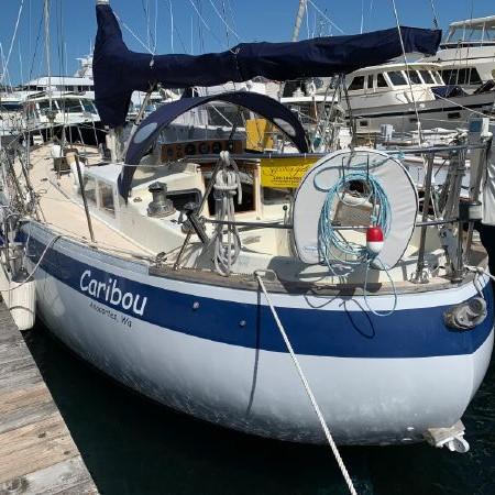 065 - Caribou - featured