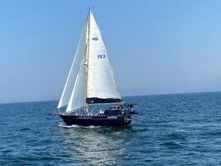 158 - Swell Dish - cruising